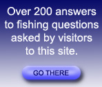 Answers to over 200 questions sent to me by visitors to the site
