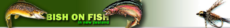Fish with Bish in New Zealand logo