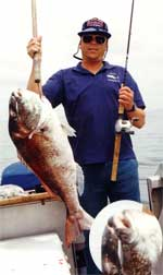 small jigs (inset) catch big snapper