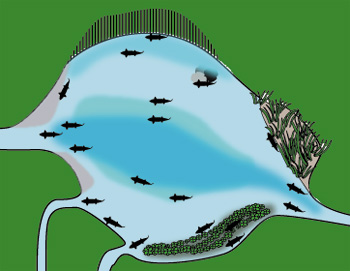 lake and pool formations that hold trout