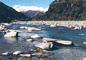 New Zealand mountain river